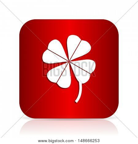 four-leaf clover red square modern design icon