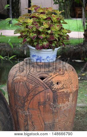 landscaping garden with big pottery jar decoration