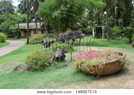 landscaping garden with flowers on wooden boat in vietnam