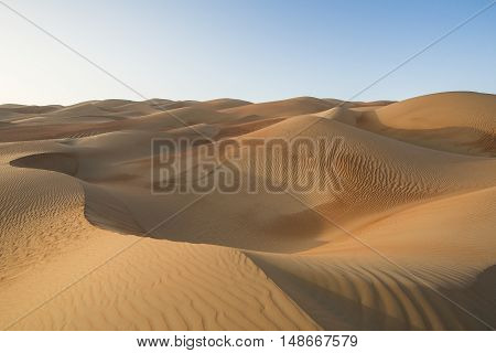 Sandtunes in Liwa desert in Aby Dhabi UAE at sunrise