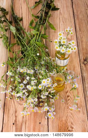 Alternative Medicine Concept - Fragrant Oil In A Bottle With Camomile Flowers On Wooden Table