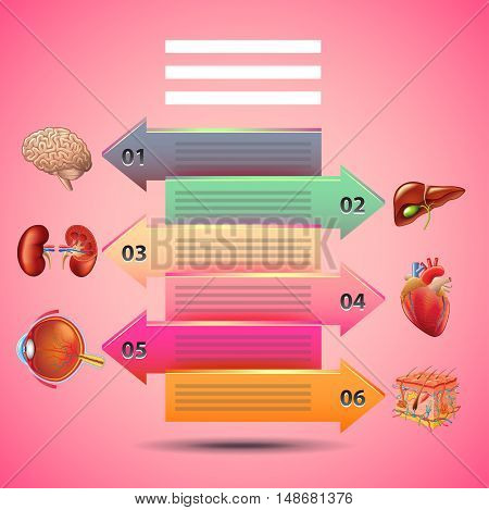 Science infographics with arrows and human organs pink background vector template