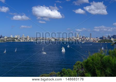 View onto Port Jackson and Rose Bay.