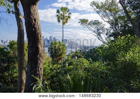 View from Taronga Zoo onto the skyline of Sydney.