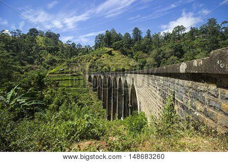 The famous train bridge in Ella (Sri Lanka).