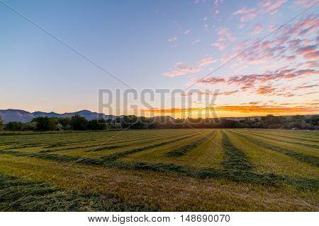 Sunrise Over Utah Fields.