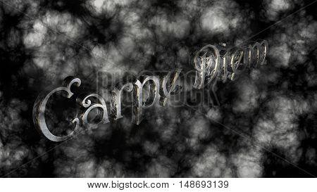 Carpe Diem - Latin Phrase That Means Capture The Moment