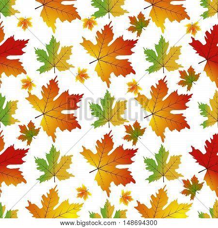 Autumn Set of Orange Maple Leaves on White Background Vector. Foliage plant nature seamless maple leaf pattern. Natural autumn season texture maple leaf seamless pattern.