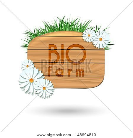 Wood panel banner with camomile flowers and grass isolated on white. Vector illustration