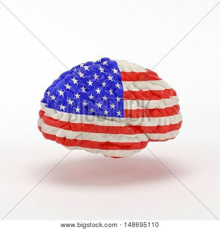 USA Flag on Human brain. 3D illustration