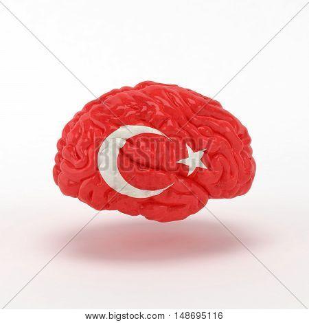 Turkey Flag on Human brain. 3D illustration.