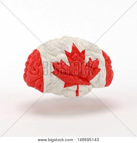 Canada Flag on Human brain. 3D illustration.
