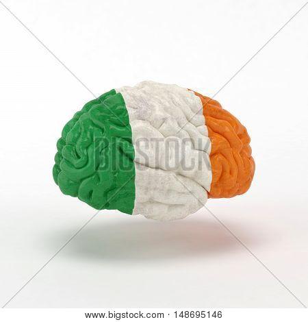 Ireland Flag on Human brain. 3D illustration.