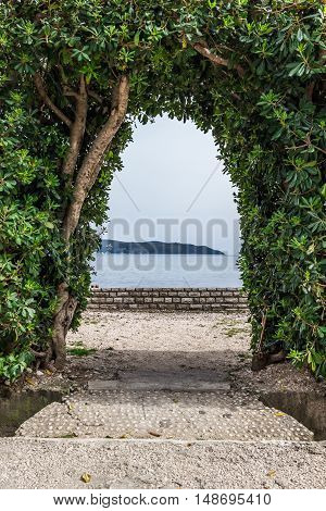 Arch in the hedge of green plants on the coast of Montenegro. Background, Texture