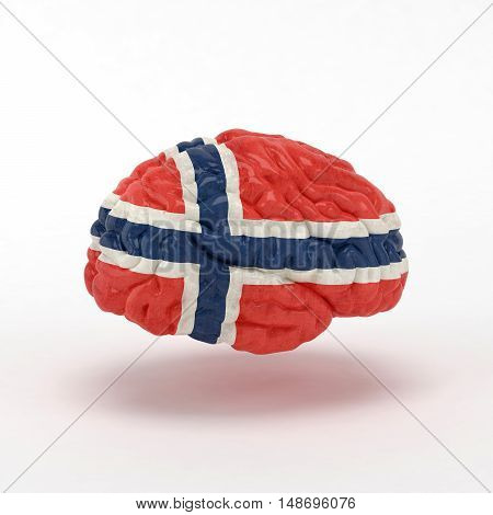 Norway Flag on Human brain. 3D illustration.