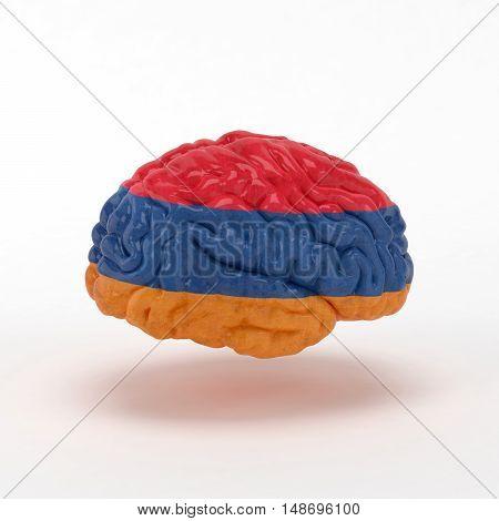 Armenia Flag on Human brain. 3D illustration.
