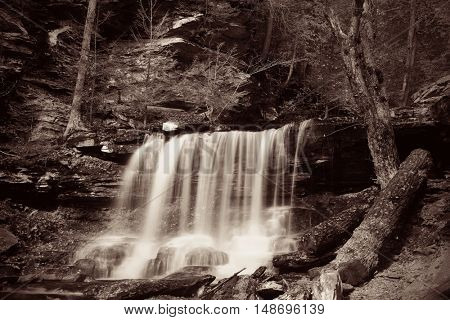 Waterfalls in woods in black and white.