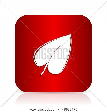 leaf red square modern design icon