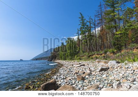 High sandy banks, wooded, surrounded by lake Baikal on the West coast.