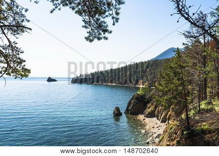 Through the dense branches of the pines offer scenic views of the rocky coast of lake Baikal.