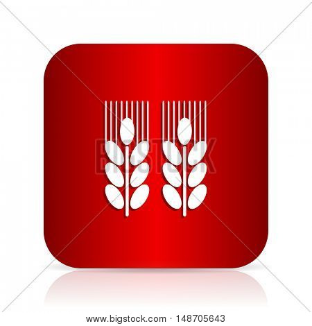 agricultural red square modern design icon