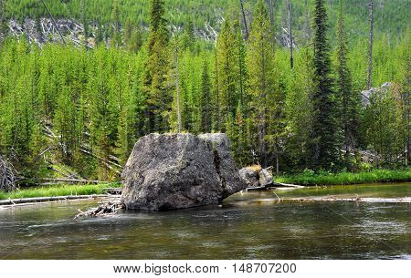 A single huge boulder sits in the middle of Firehole River in Yellowstone National Park. Trees and wilderness line shoreline.