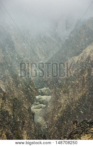 Grand Canyon of the Yellowstone river during snowfall blizzard with pine trees and waterfall