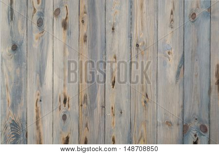 Closeup of an old wooden texture with natural patterns
