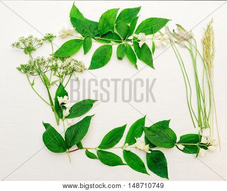 Wreath Of Jasmine Flowers And Leaves And Grass On White