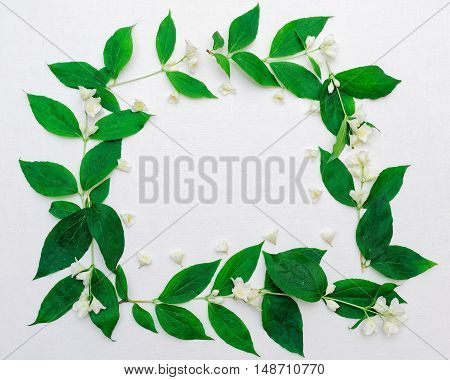 Wreath Of Jasmine Flowers And Leaves On The White Background