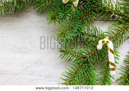 fir branch on wooden, decoration, Christmas blank background