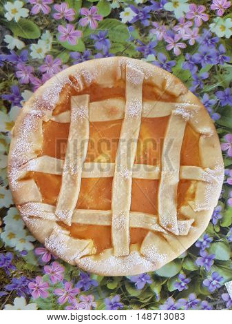 tart with peach jam, typical Italian sweet rich in calories