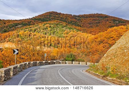 Colourful curving autumn road in Meteora Greece