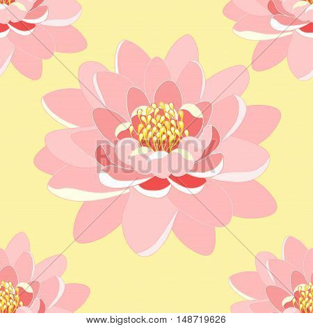 Seamless Pattern Lotus Flower Pink Close Up On A Yellow Background. Vector Illustration