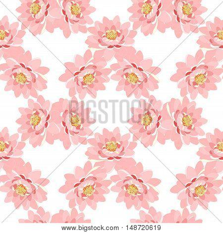 Seamless Pattern The Lotus Flower Pink. Vector Illustration