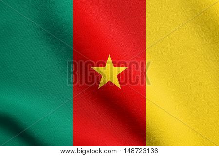 Cameroonian national official flag. African patriotic symbol banner element background. Flag of Cameroon waving in the wind with detailed fabric texture, illustration