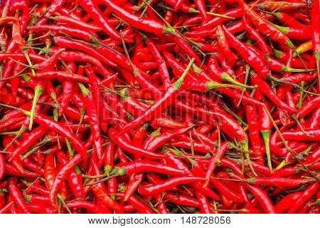 fresh hot red chiis at the market