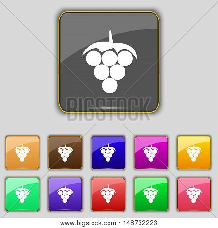 Grapes Icon Sign. Set With Eleven Colored Buttons For Your Site. Vector