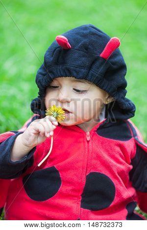 Little baby girl wearing a ladybug costume