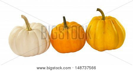 Three Little pumpkin for chinese new year on white background