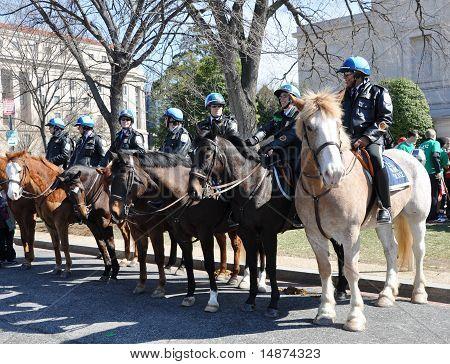 Parada do dia de São Patrício em Washington, DC