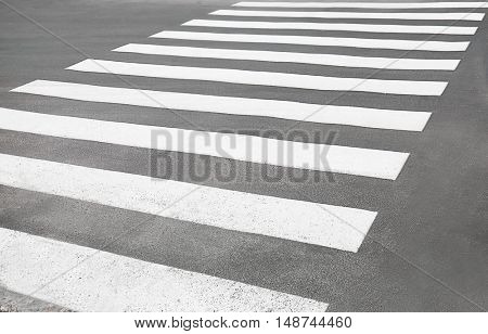 Zebra crossing on a road, close up