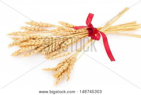 Ears of wheat tied with red ribbon