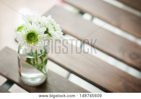 flower mum on the tablecloth, beautiful green color flower