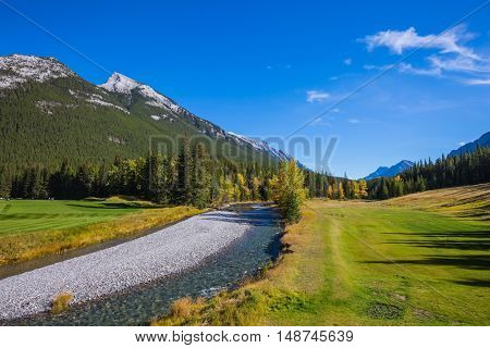 Beneaped autumn stream with a pebbly bottom flows among fields and pine forests. Magnificent  valley in Banff National Park