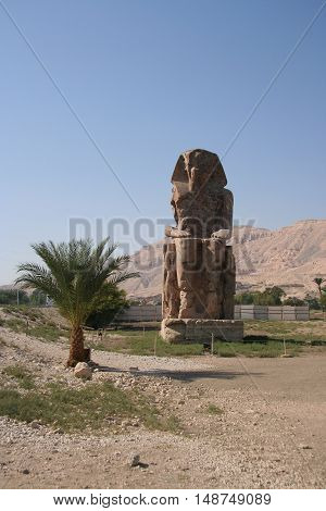 One of the two statues of memnon in Luxor