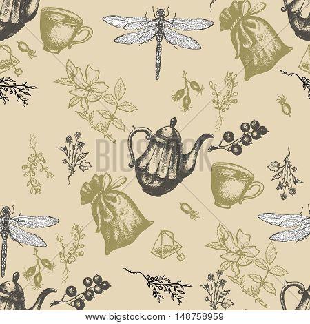 Herbal tea seamless pattern herbs and flowers botanical vintage herbs tea background hand drawn ink vector