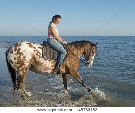 woman and appaloosa horse playing in the sea