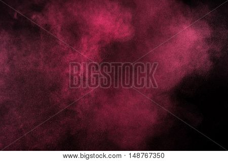 Magenta Powder Explosion On Black Background.