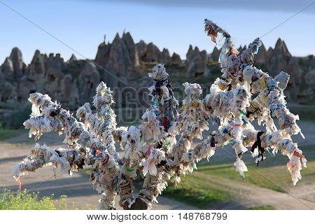 Tree Of Wishes in Cappadocia Central Anatolia Turkey